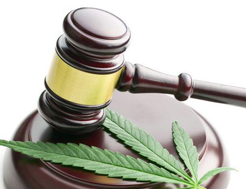 Kosten cannabis aftrekbaar